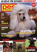 pes_pritel_cloveka_1612